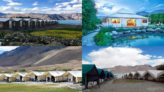 Best Camping Sites/Accommodation option on your road trip to Leh Ladakh