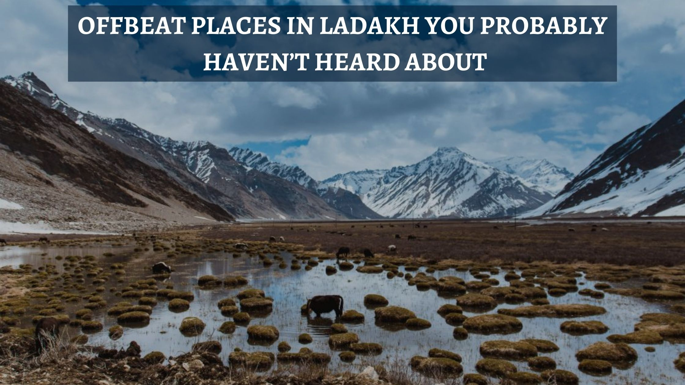 Offbeat Places In Ladakh You Probably Haven't Heard About